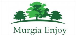 logo murgia enjoy copy